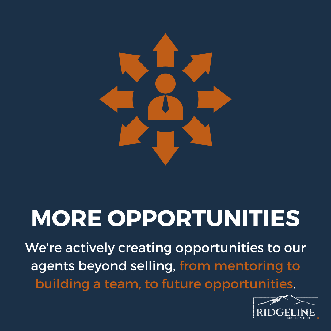 More Opportunities