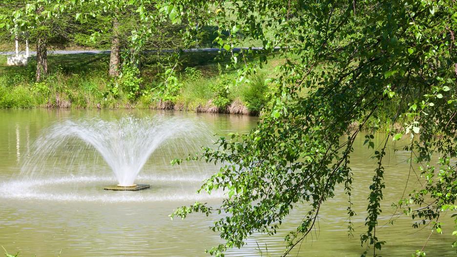 Quiet-Waters-Park