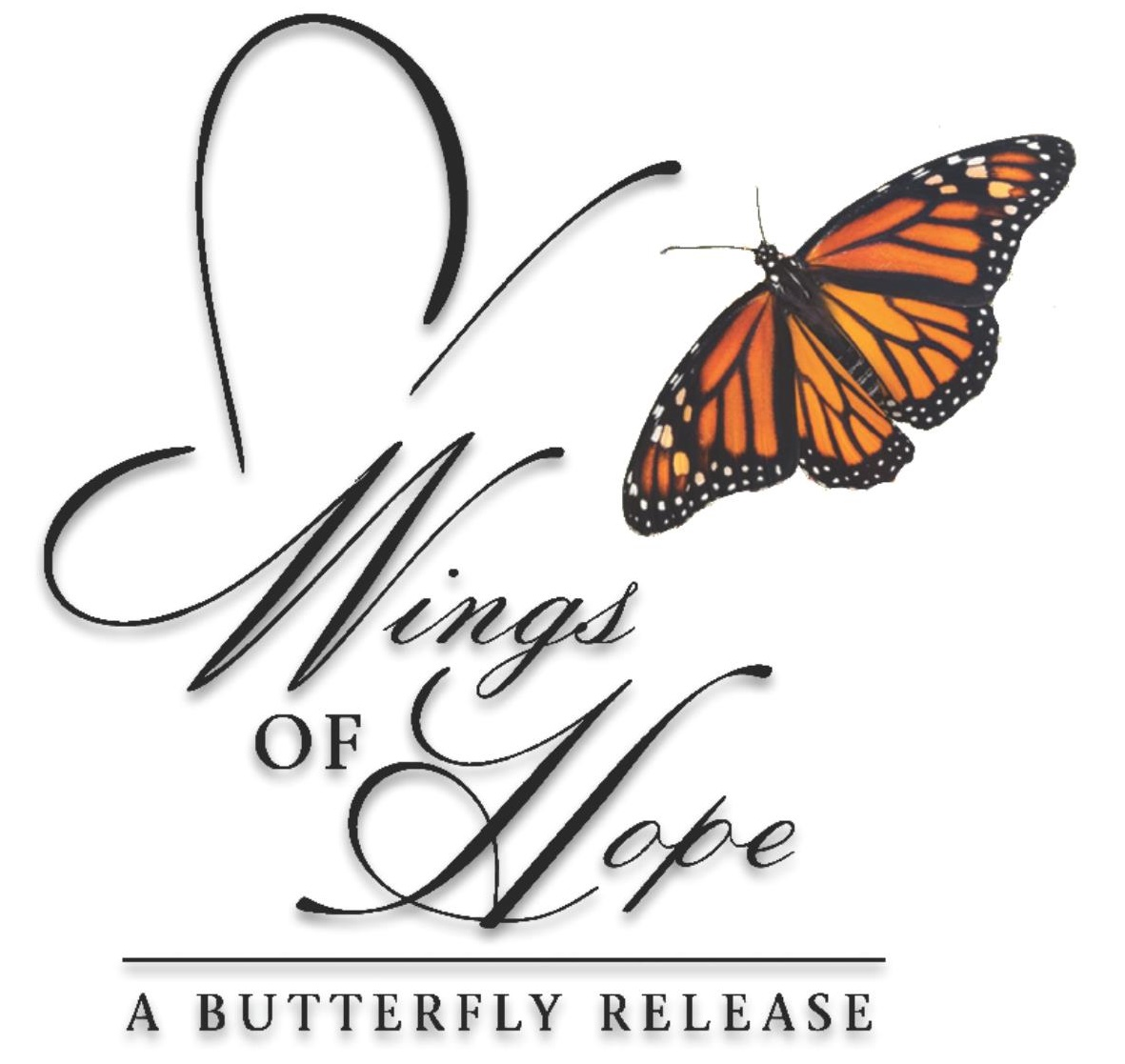 11th Annual Wings of Hope