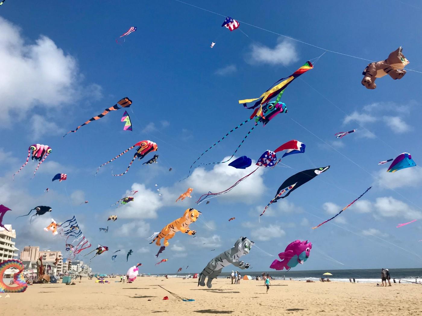 Maryland-International-Kite-Festival
