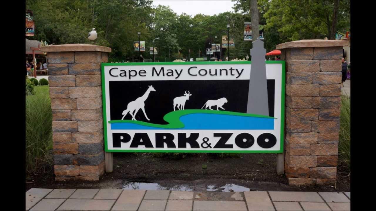 Cape-May-Zoo