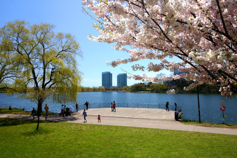 Activities & Entertainment in Toronto