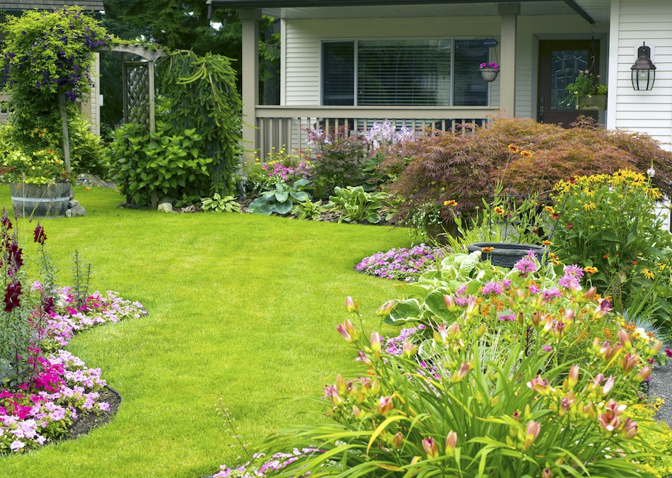 6 Inexpensive Landscaping Projects For Your Home