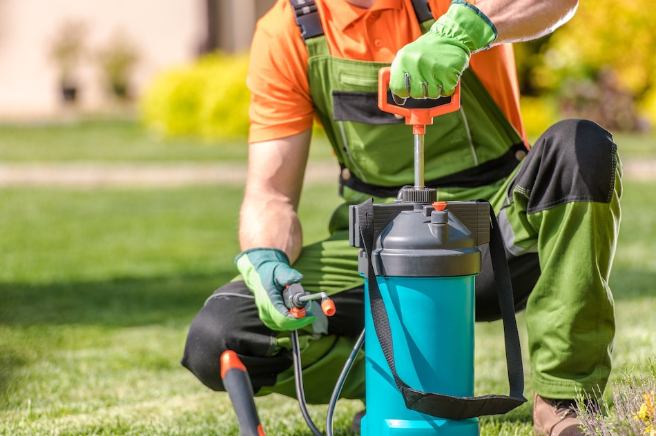 Using Pesticides Safely