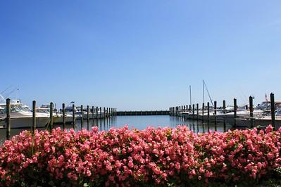 Chesapeake Beach Homes for Sale