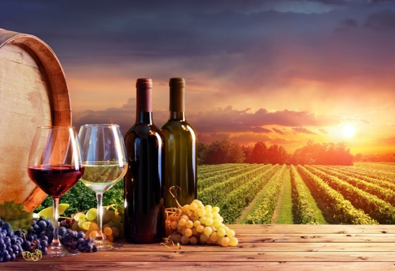 The Patuxent wine trail