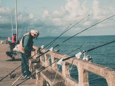 Best Public Fishing Spots in South Maryland