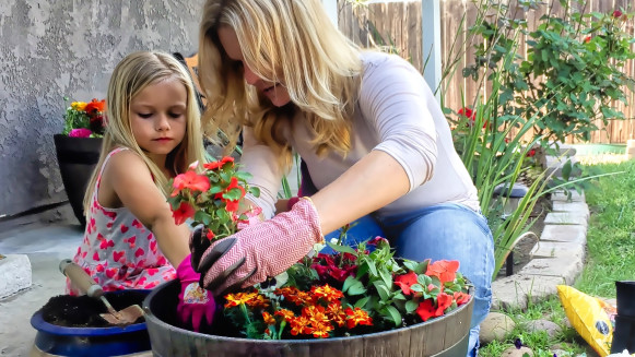 South Maryland Spring Gardening Tips and Tasks