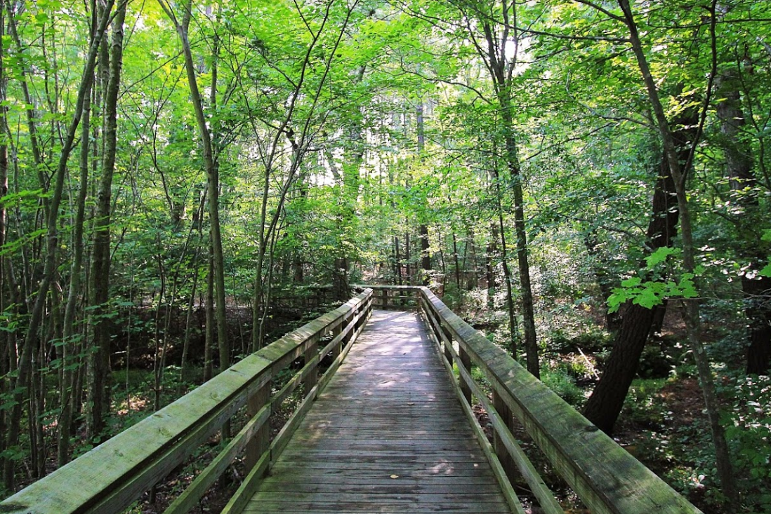 St. Mary's River State Park