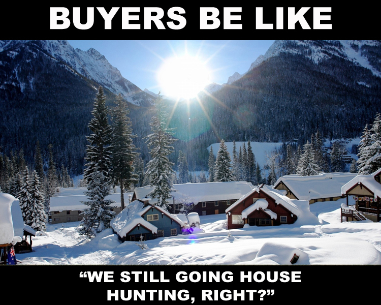 buyers wanting to see houses in chicago snow