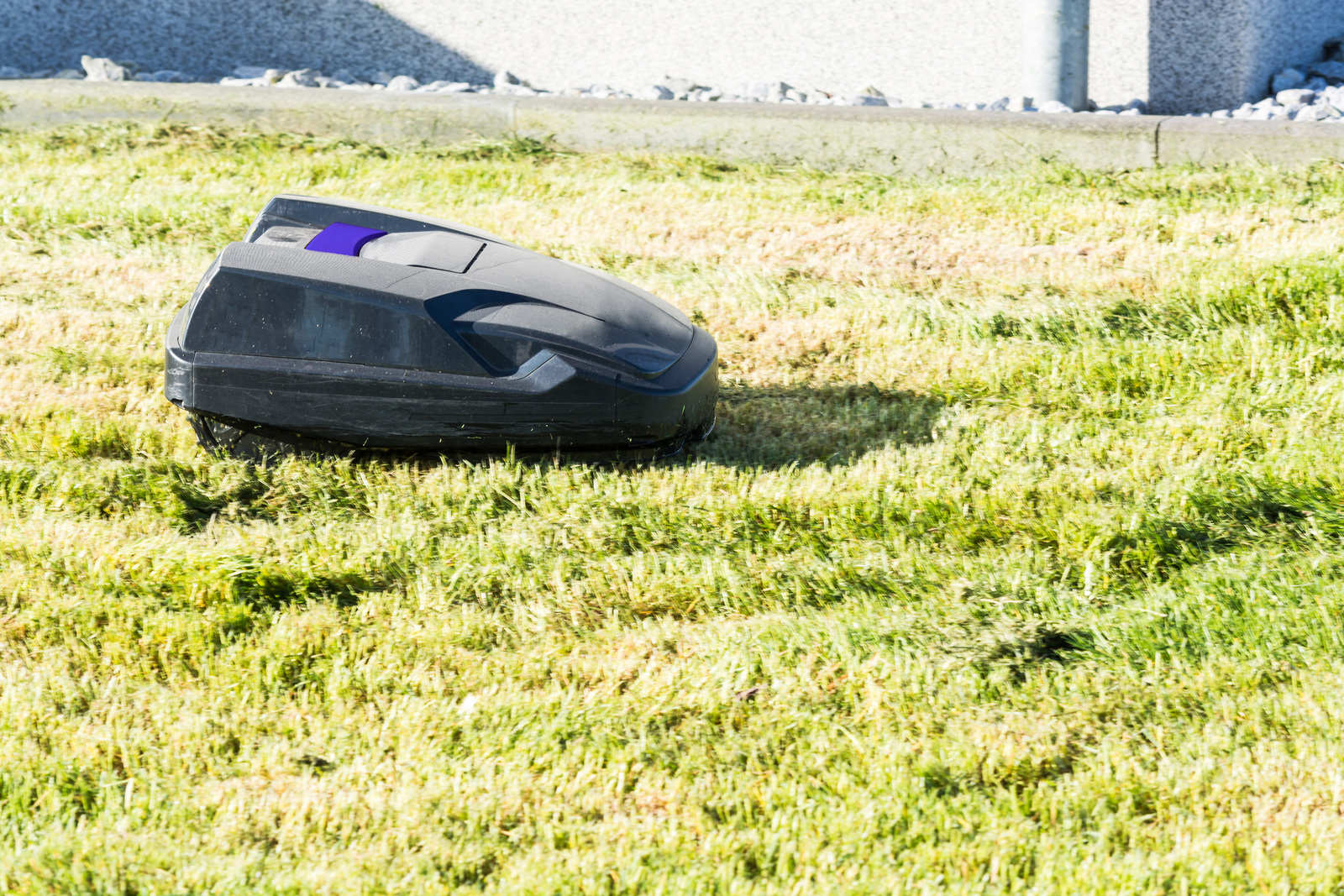 smart lawnmower for your patch of grass in your scottsdale home