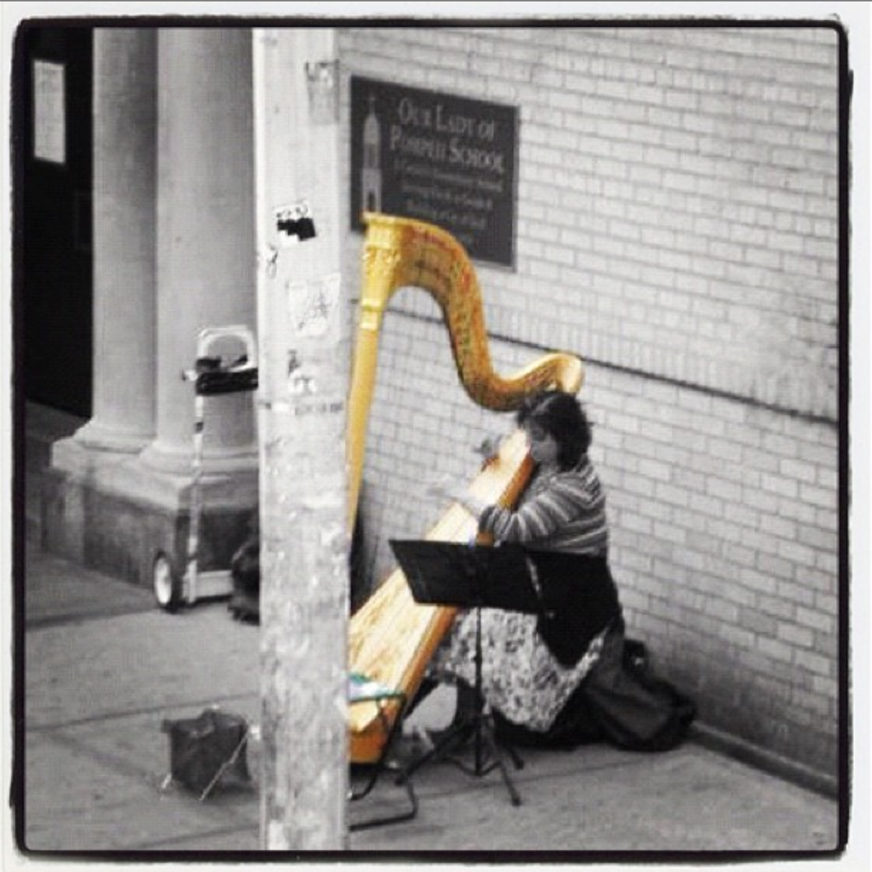 woman playing harp in new york