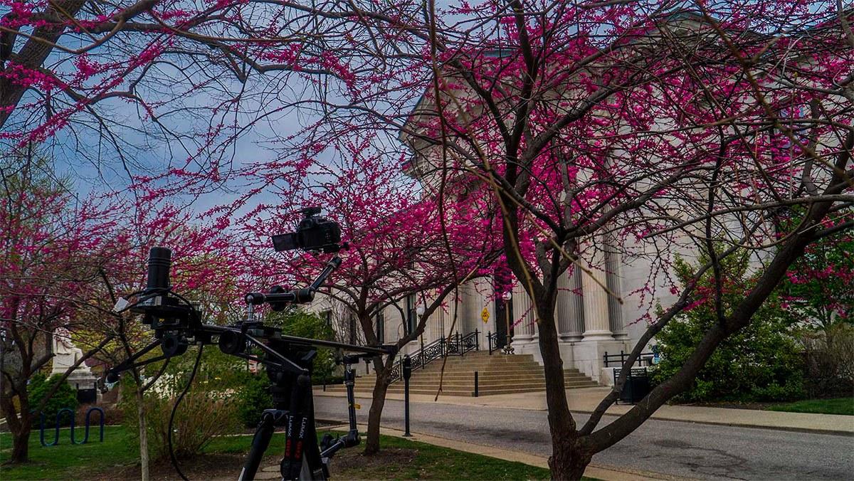 Spring in Louisville