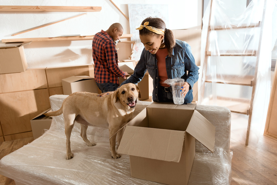 Home Moving Preparation: 5 Tips for a Successful Move