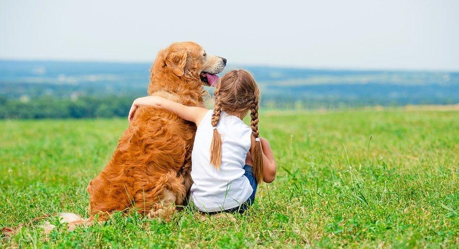 Breckenridge Dog Friendly Places