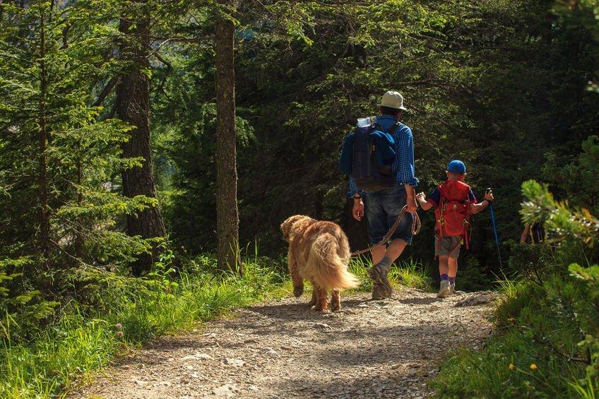 Breckenridge Homes For Sale Near Hiking Trails