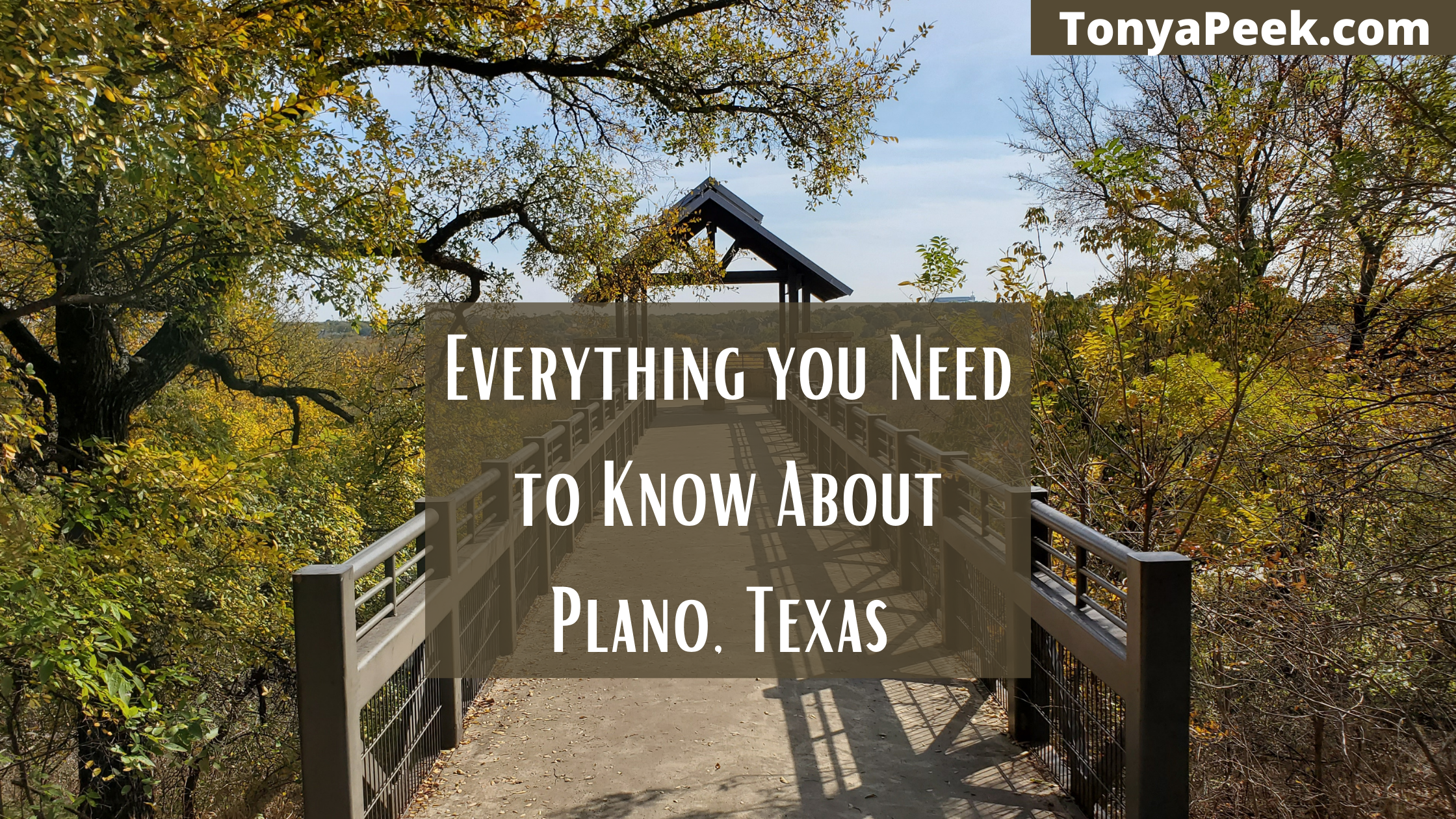 Everything You Need to Know About Moving to Plano
