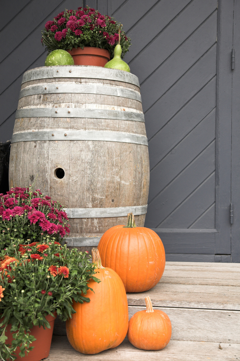 The Perfect Fall Décor for Your Front Porch