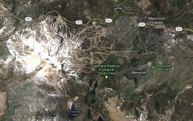 Map of Mammoth Lakes, California