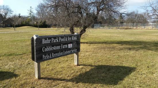 Buhr Park in Ann Arbor