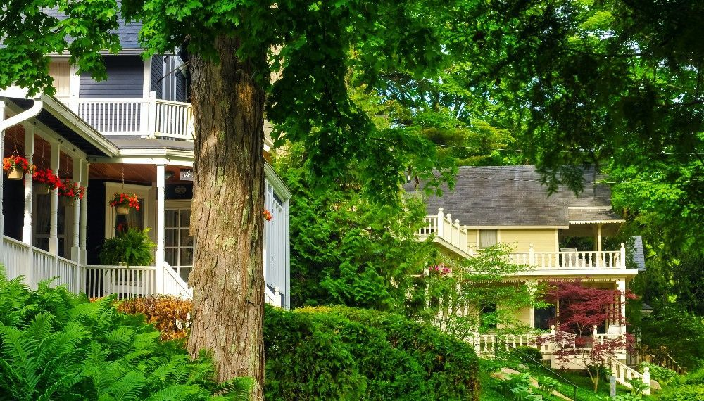 Homes for Sale in Livonia