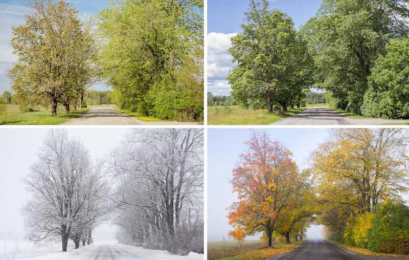 Weather & Climate in Novi, MI