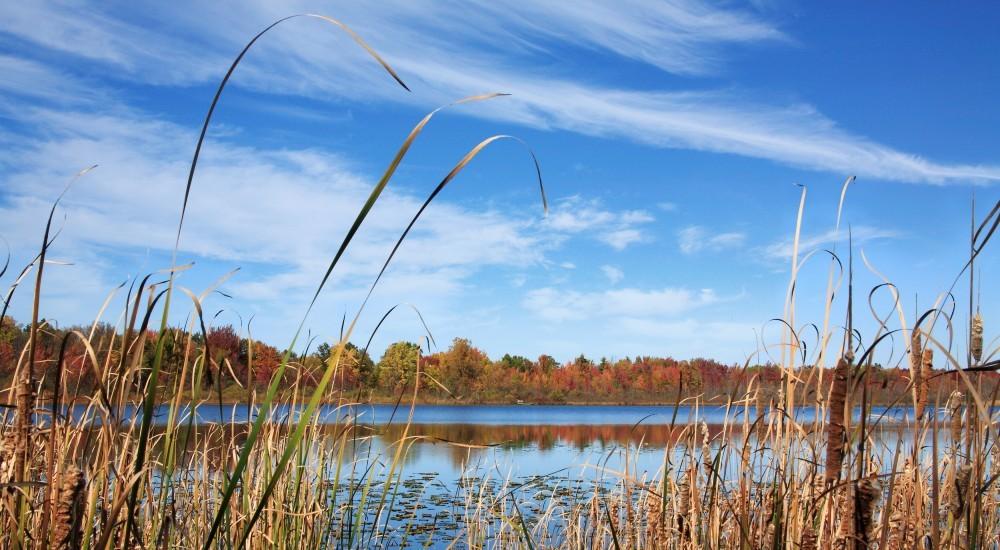 Oakland County Lake