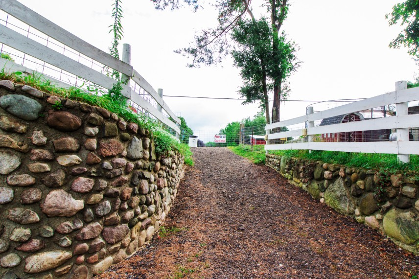 Road with rock wall leading to Rochester Cider Mill, Michigan