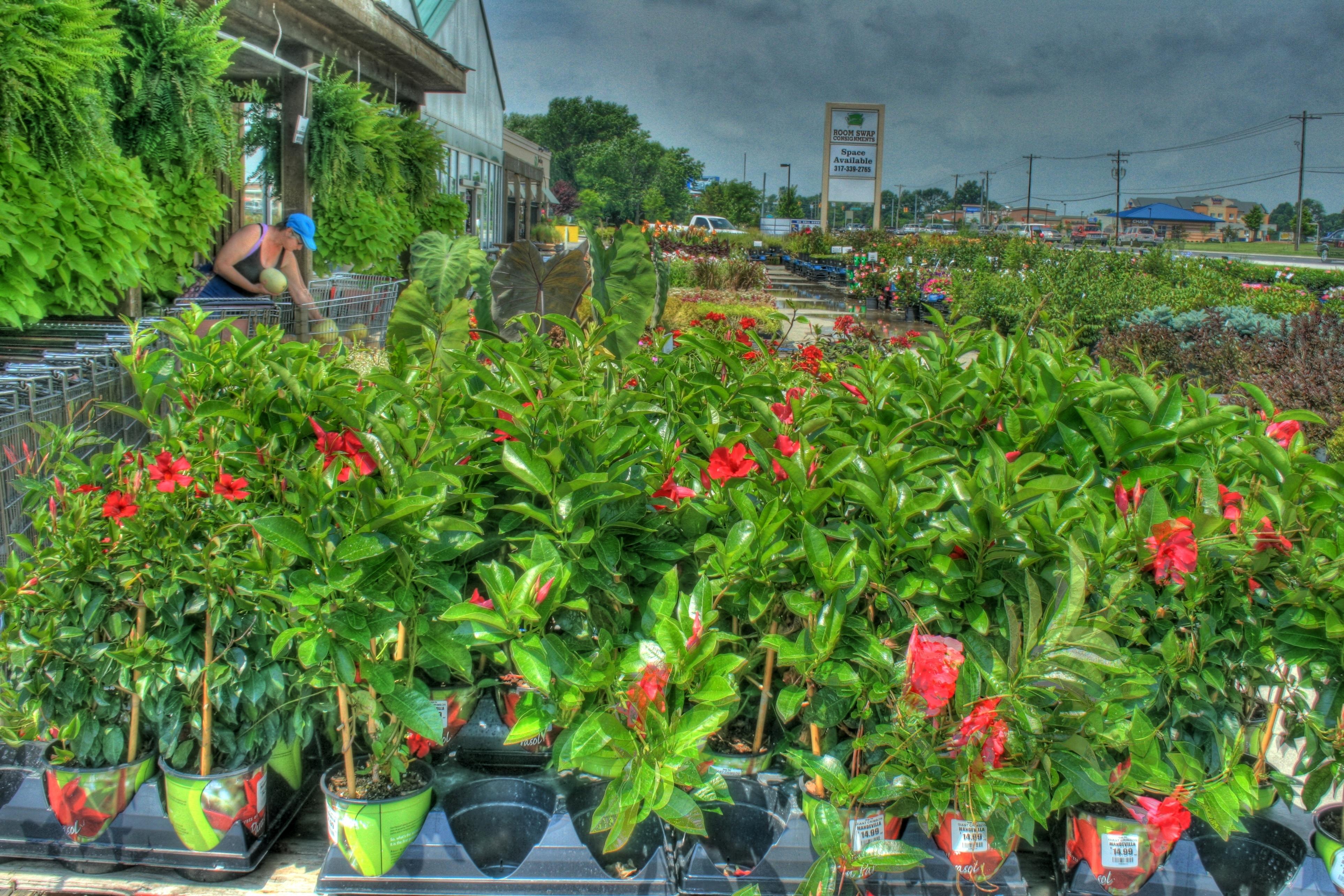 Avon Indiana Farmers Market