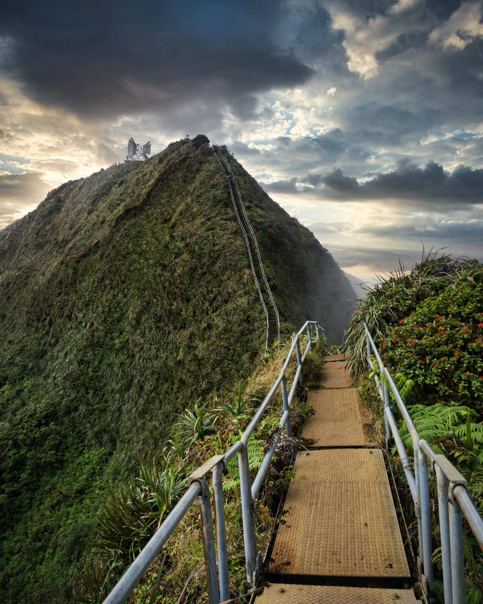 Oahu Nature Trail