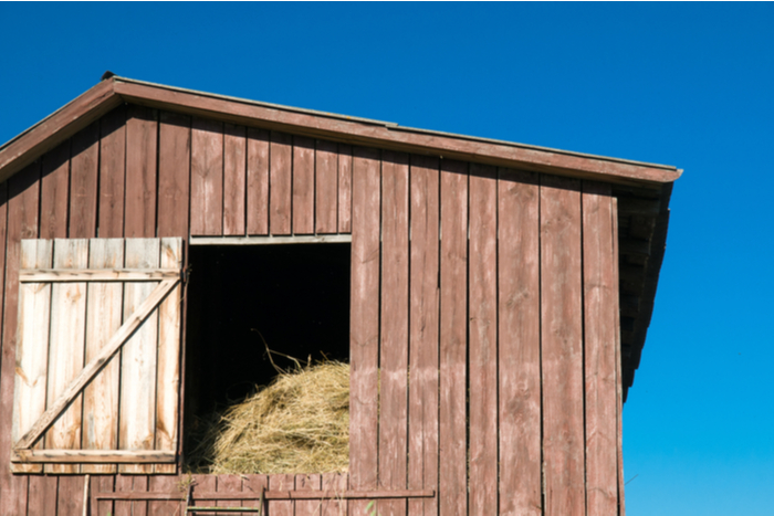 Barn Stall in Douglas County, Colorado