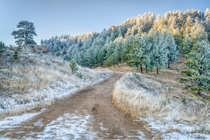 Fort Collins Equestrian Trails