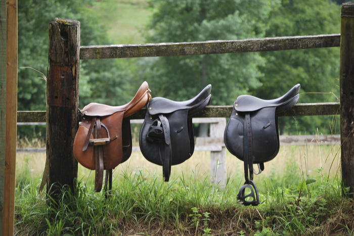Glossary of Terms for Horse Property Buyers in Colorado .