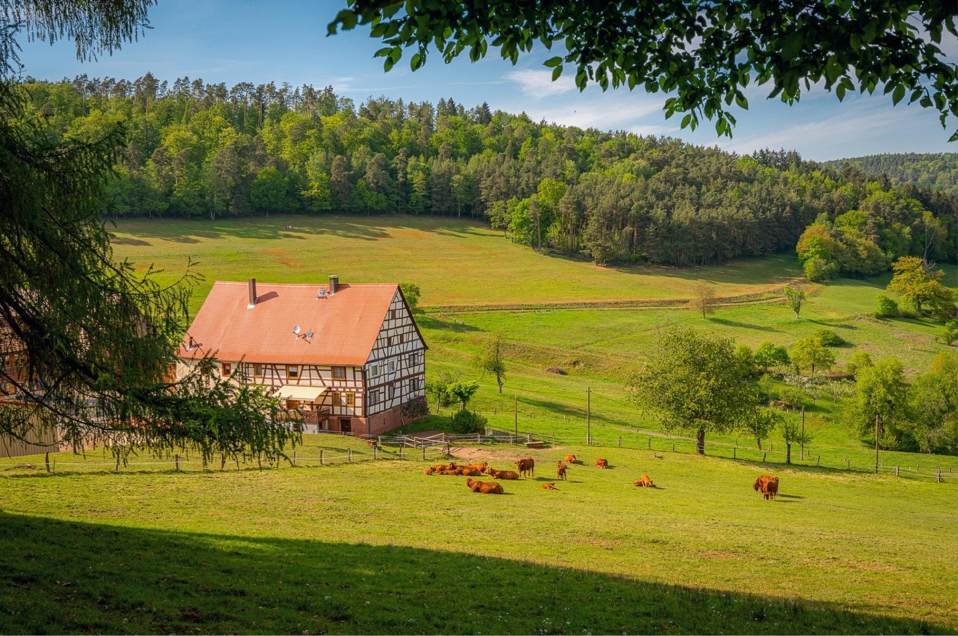 Horse property Around Denver, Colorado