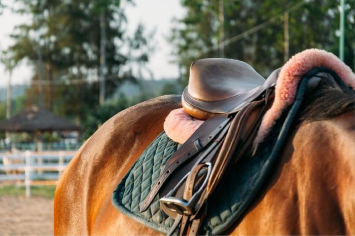 Morrison, Co  Equestrian Homes