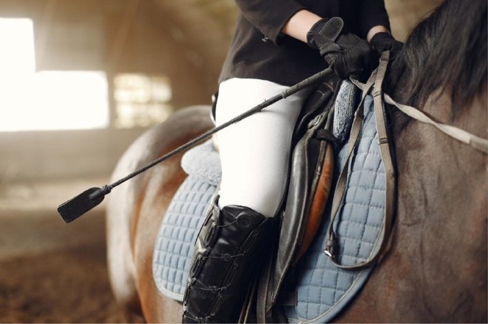 Morrison Equestrian Homes and Estates