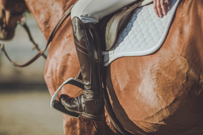 Equestrian Facilities with Land in Colorado Kenna Real Estate