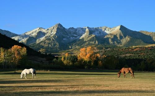Denver equestrian homes