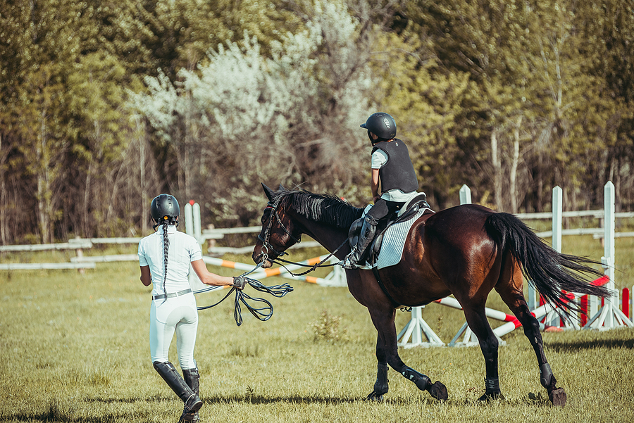 Learn to ride a horse near Acton real estate.