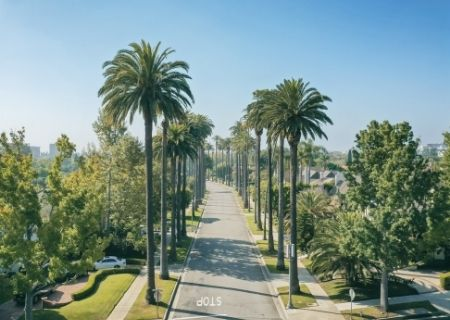 Beverly Hills Luxury Home and Condo Leases