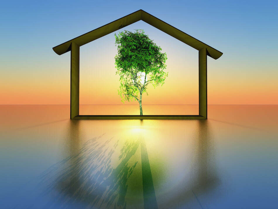 Sustainable Construction Trends in Residential Real Estate
