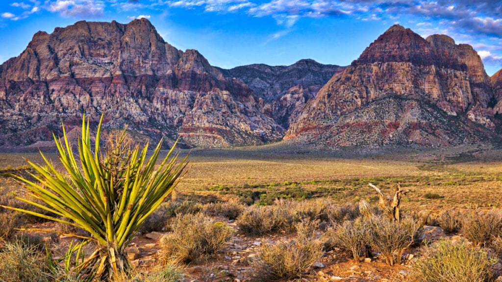 Living in Las Vegas - Red Rock Canyon Conservation Area