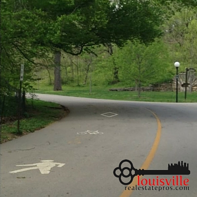 Paved bike and pedestrian trail on the roadway surrounding by trees in Cherokee Park.