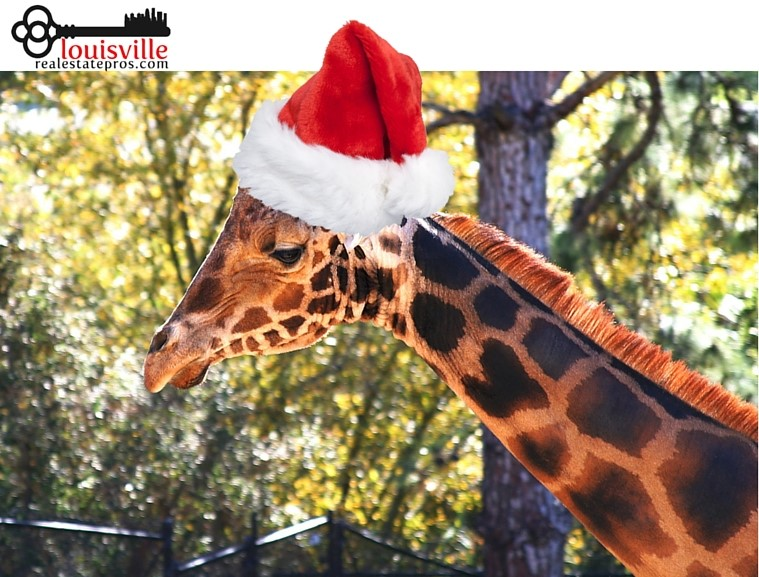 The Louisville Zoo's Santa Safari