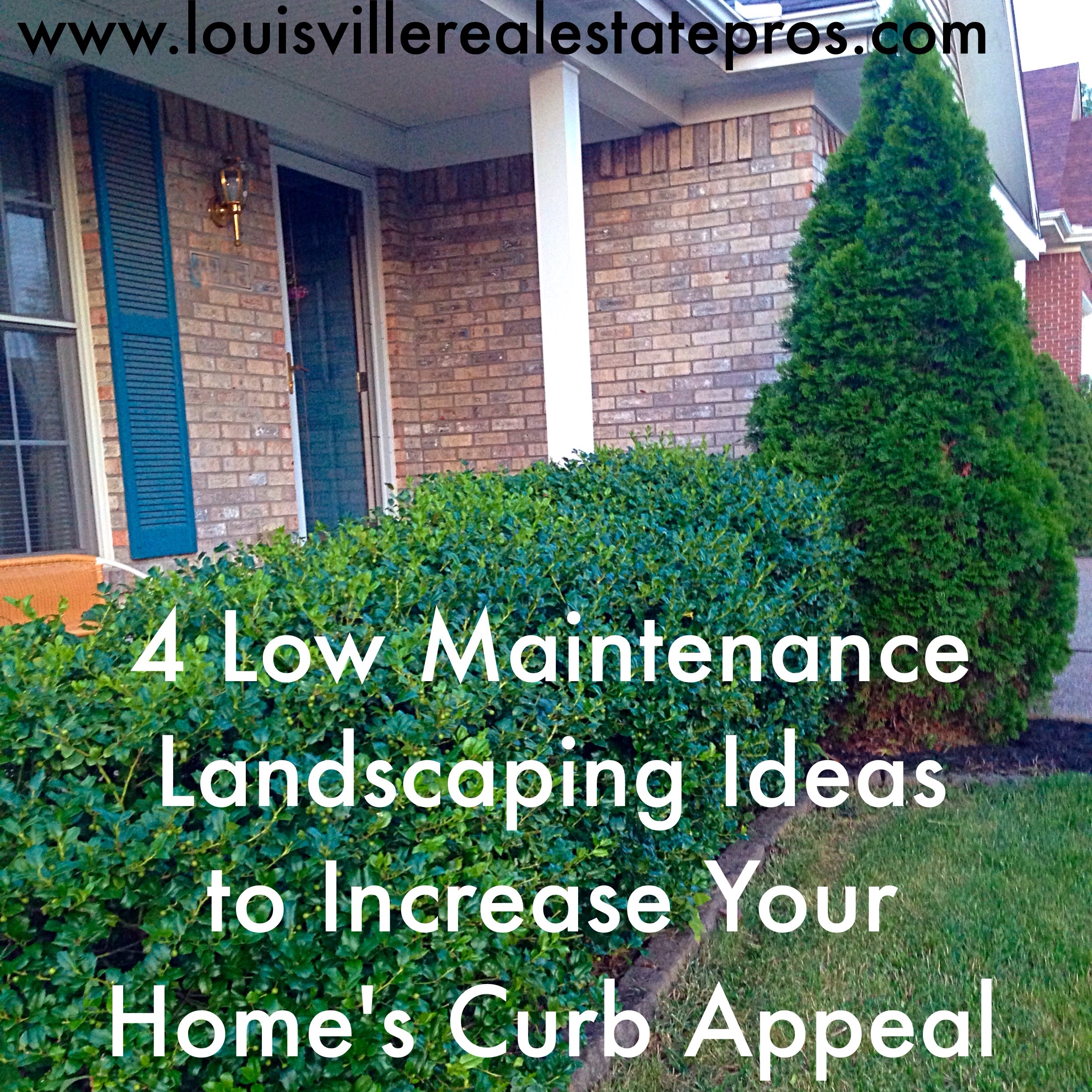 4 low maintenance landscaping ideas to increase your for Low bushes for landscaping