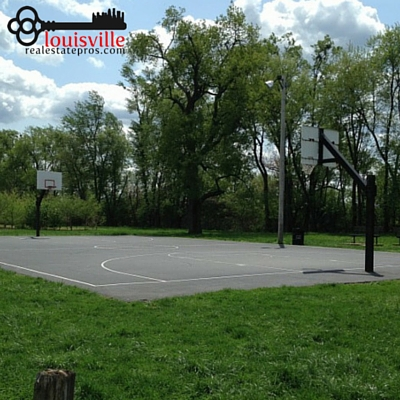 Outdoor basketball court surrounded by grass and tress at Seneca Park.