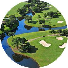 GolfTennis