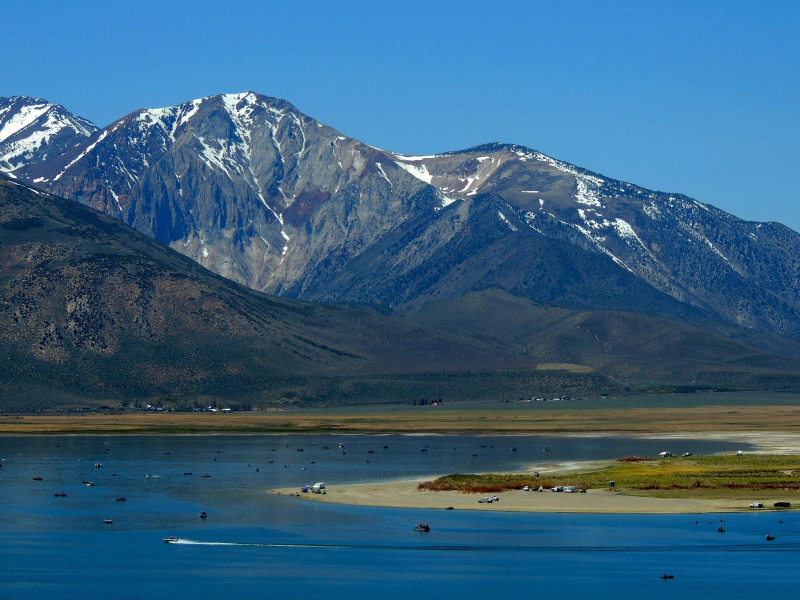 Trout Fishing Paradise | Eastern Sierra | Crowley Lake