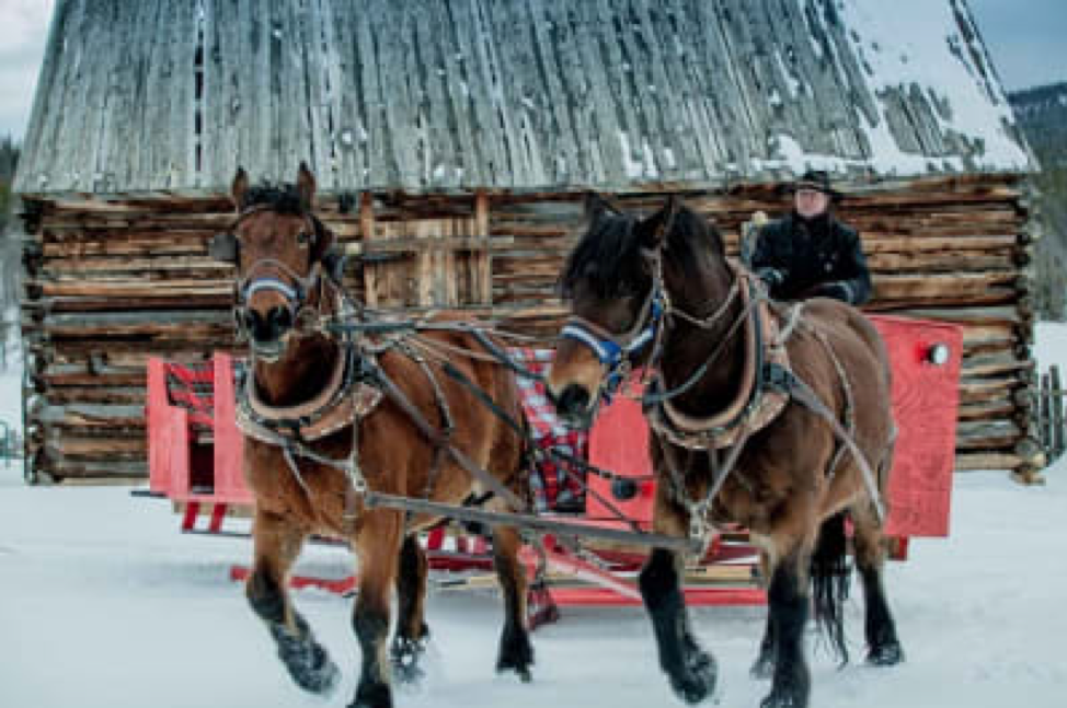 Sleigh Ride at Keystone