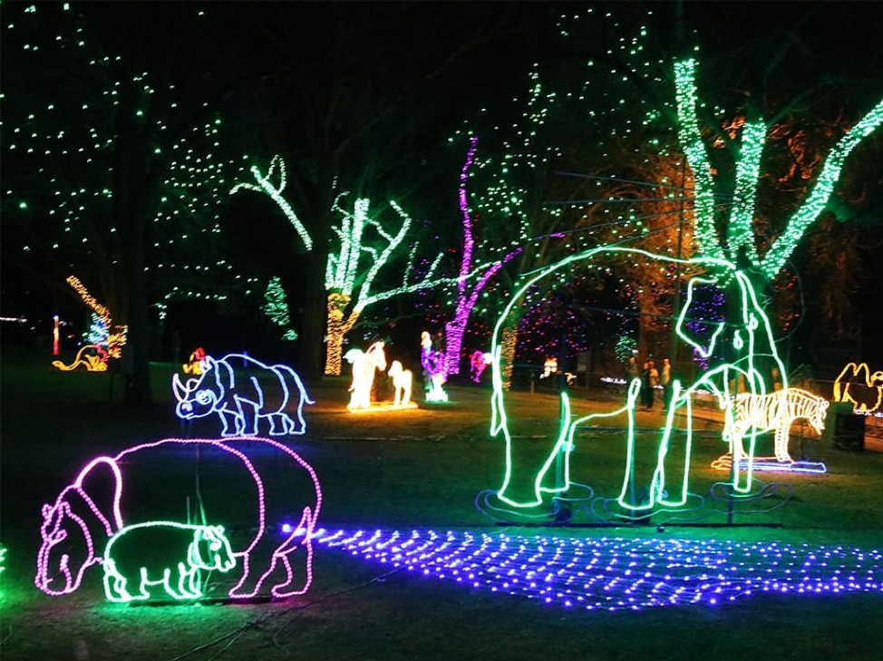 The Zoo Lights: Illuminated with Life